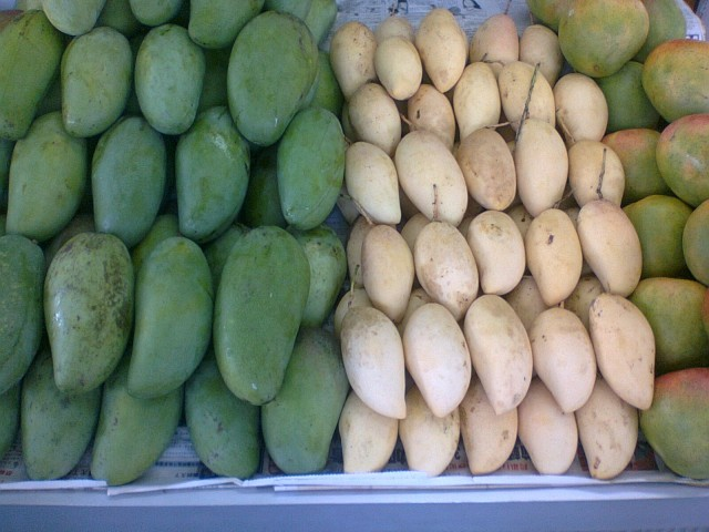 mangos at Tapah R&R