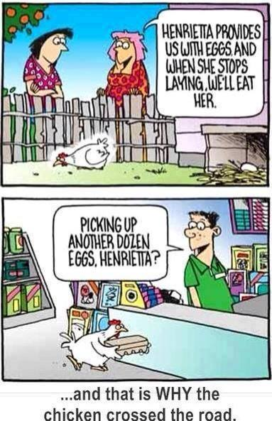 why chicken cross the road